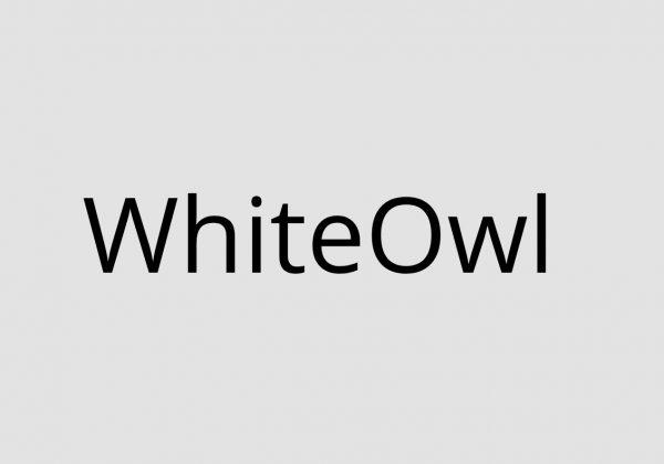Whiteowl 4 in 1 file converter