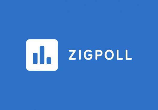 Zigpoll Customer polling platform lifetime deal on rebeliance