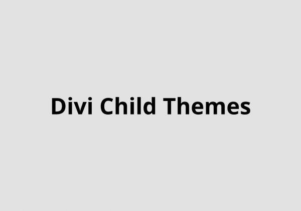 51 Divi Child themes