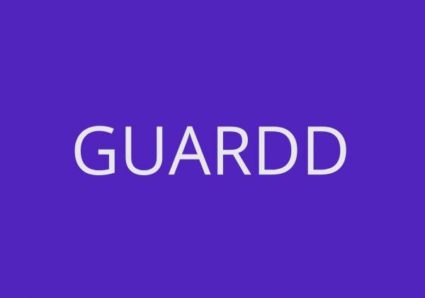 Guardd password security tool