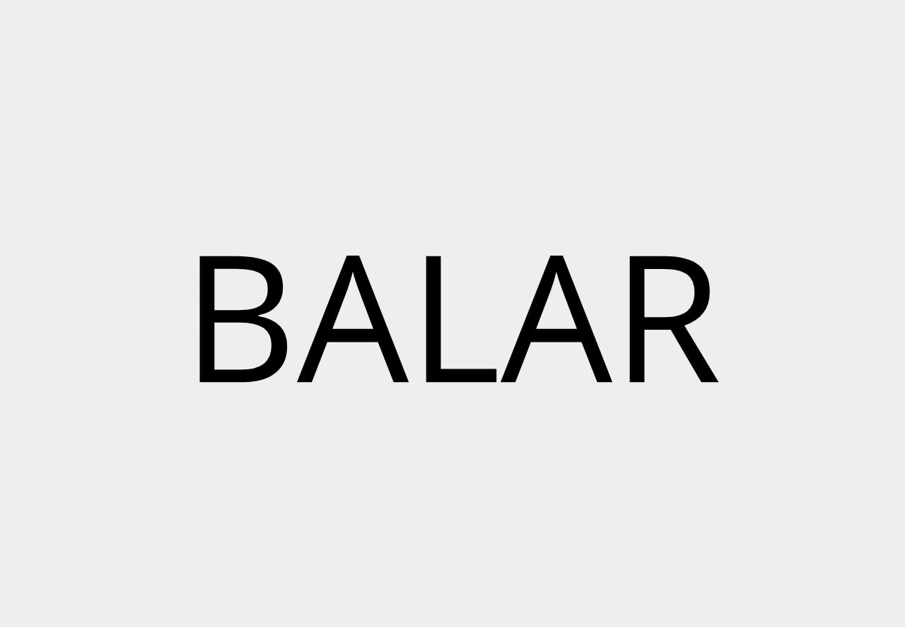 Balar Budget planner and manager lifetime deal on dealfuel
