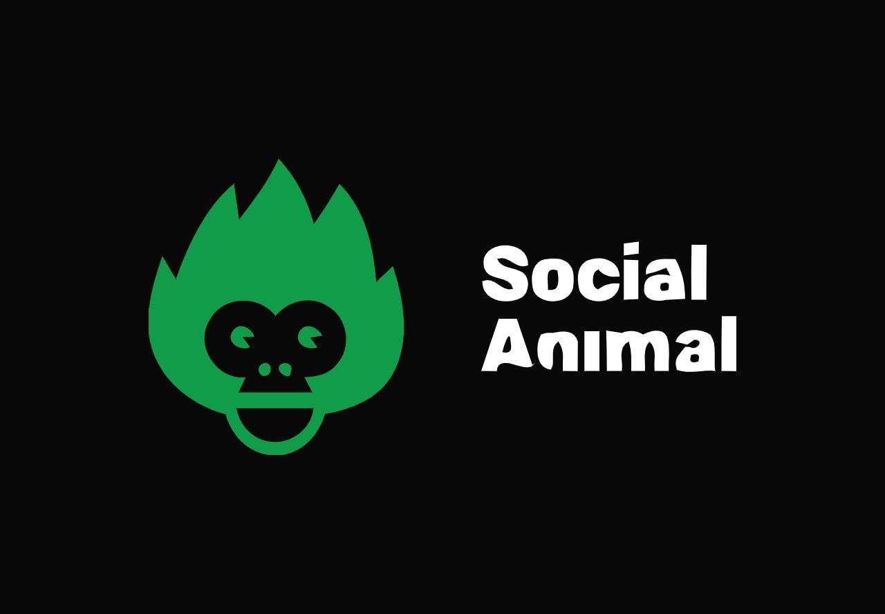 Social Animal lifetime deal on appsumo